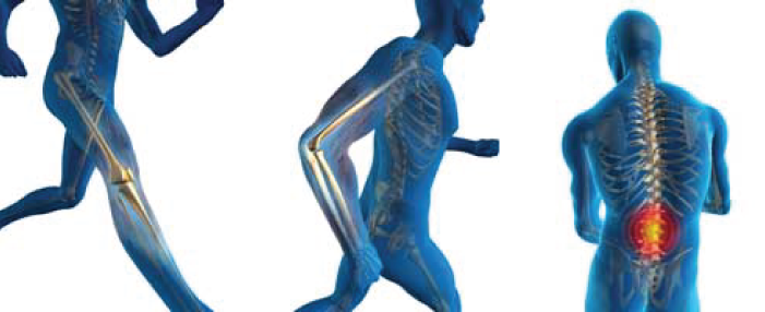 Prehab Orthopedic PT